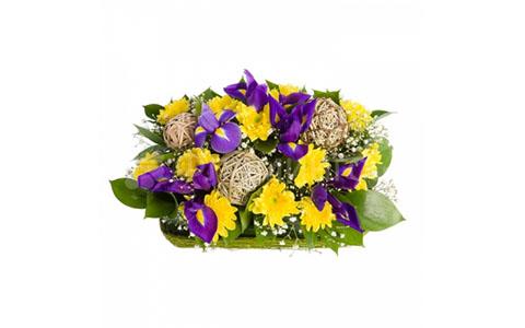 хризантема и ирис