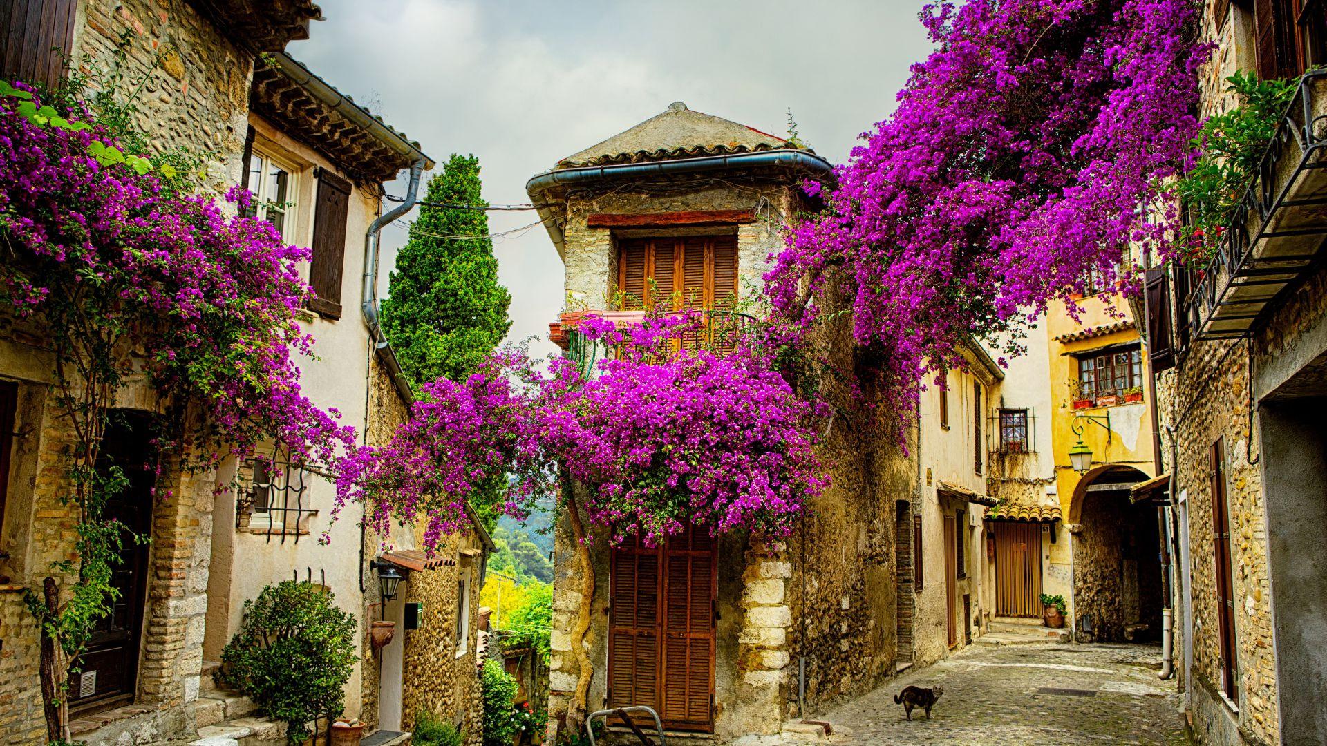 французская деревня